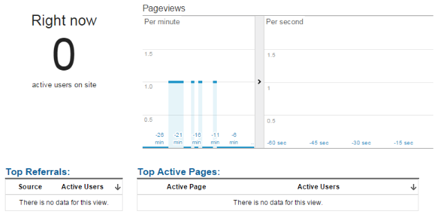 Testing Filtered View - Excluding IP Google Analytics