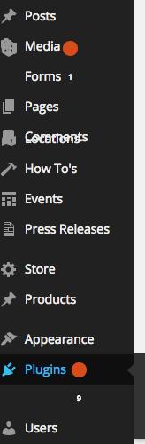 Wordpress Admin and Chrome Display Error, Example 2