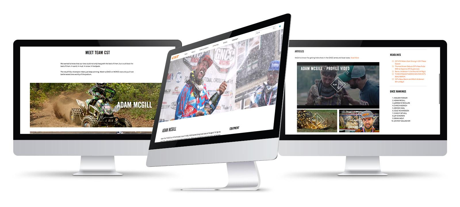 Screenshots of the CST Website